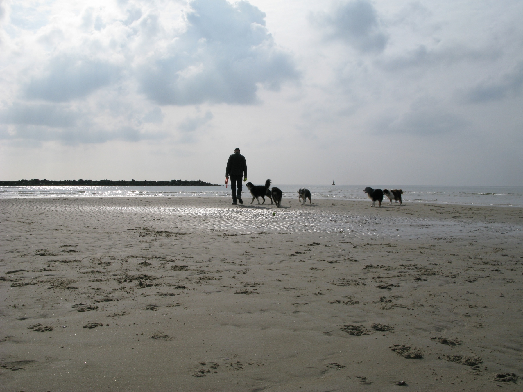 Texel sept '08